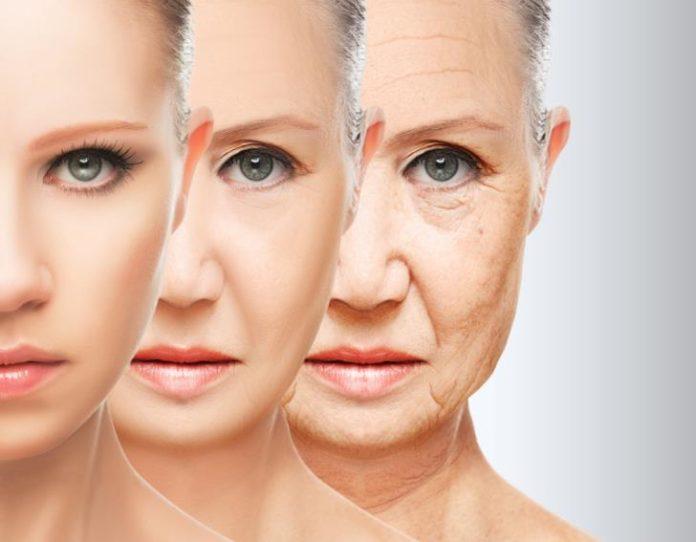 Οι 7 τροφές που μπλοκάρουν τη γήρανση